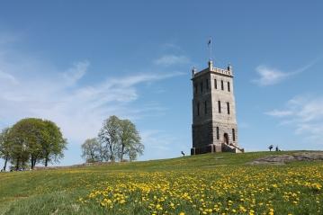 Slottsfjell våren